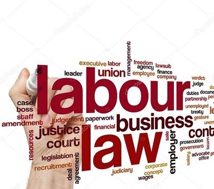 Draft the internal labour regulations